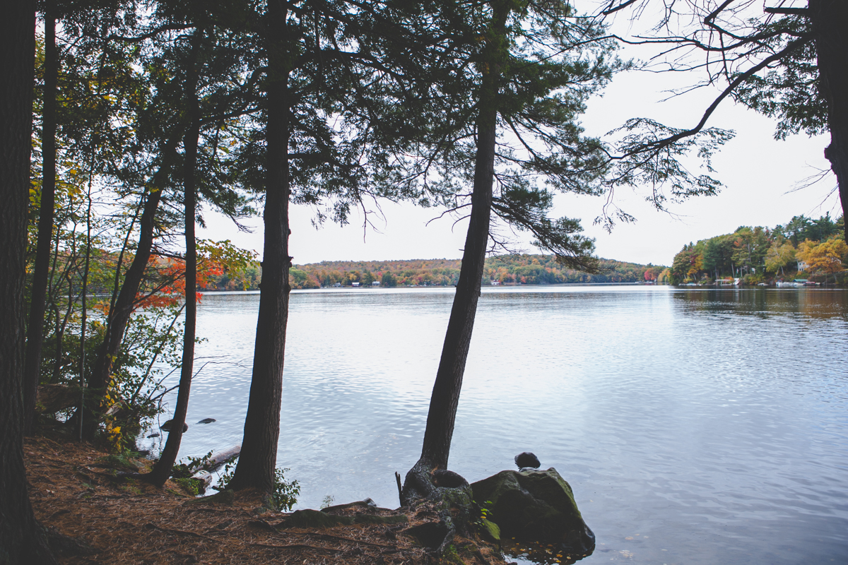The lake at Tolland State Forest.